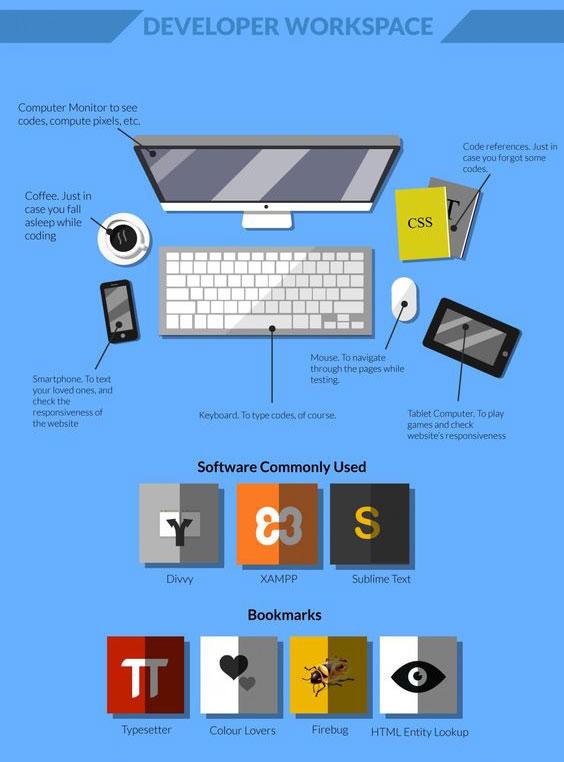 infographic for web developer